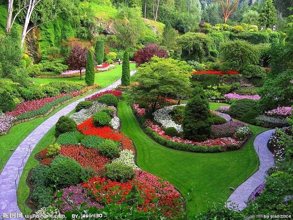 Ecologizarea asigura un mediu natural, si sanatos.
